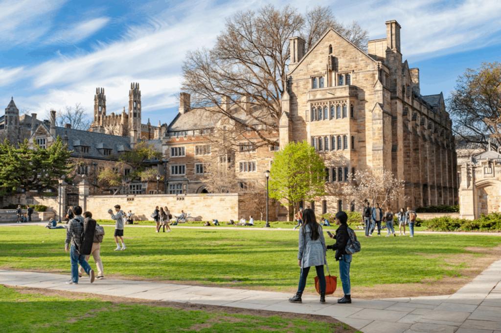 Scholarship Winner - Patrycja Gorska Yale University